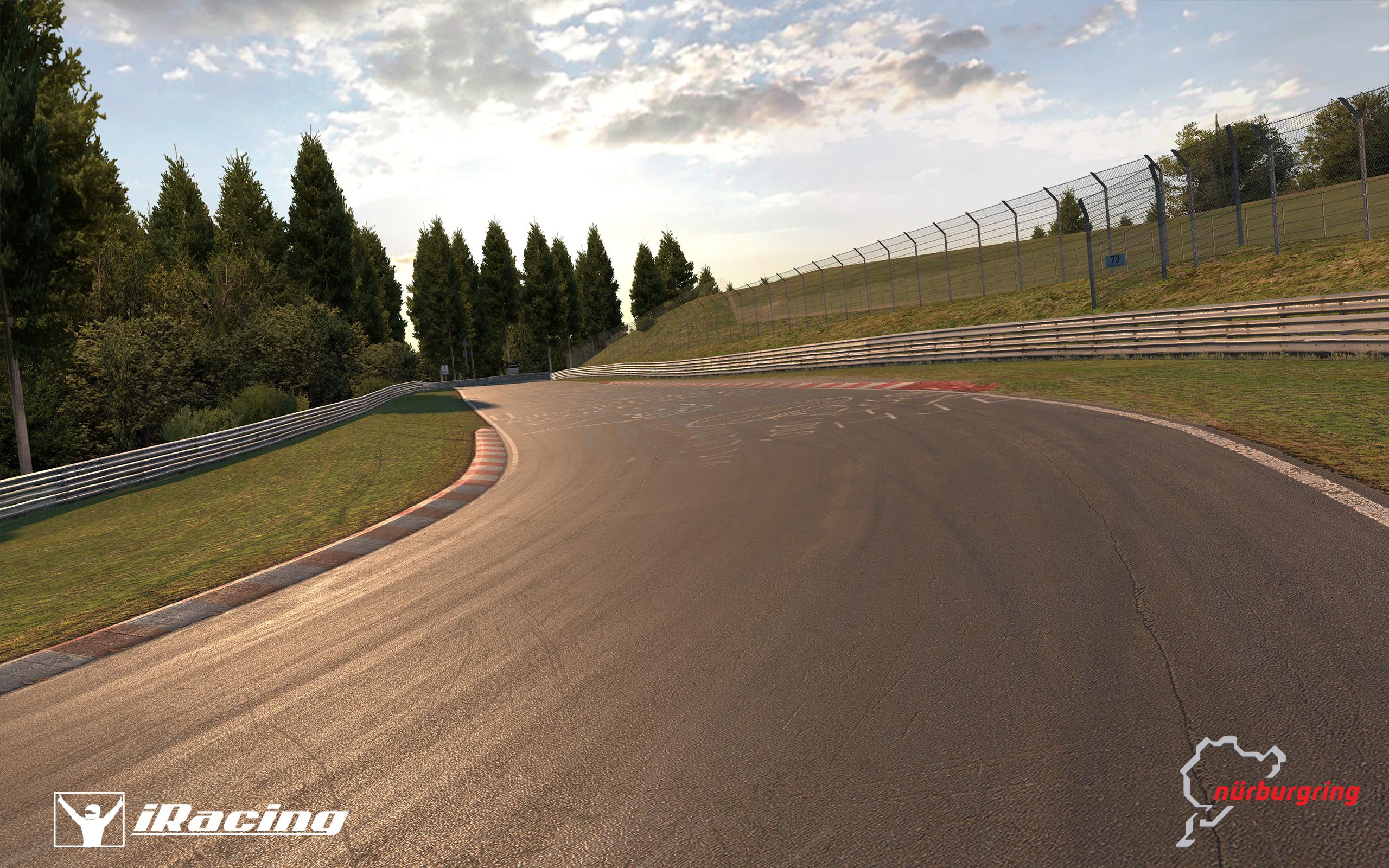 iracing_nurburgring_19